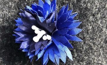 le-bleuet-de-france
